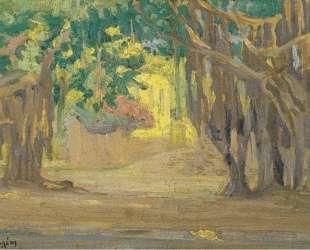 Trees at Cairo — Константин Малеас