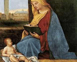 Богородица с младенцем (Мадонна Таллард) — Джорджоне