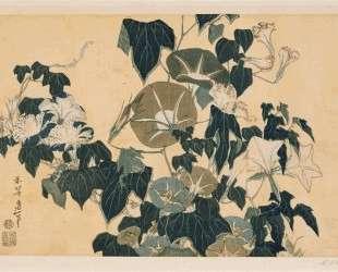 Volubilism and Pippin — Кацусика Хокусай