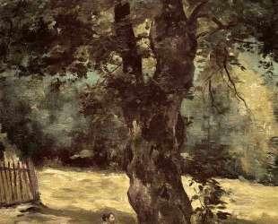 Woman Seated Beneath a Tree — Гюстав Кайботт
