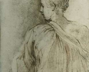 Young man seen from behind, face in profile — Пармиджанино