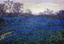 Bluebonnets at Twilight, near San Antonio 1920