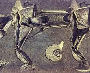 Хромая лошадка…1920 — Макс Эрнст