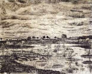 A Marsh — Винсент Ван Гог