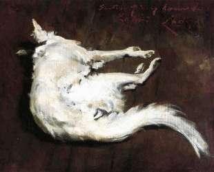 A Sketch of My Hound Kuttie — Уильям Меррит Чейз