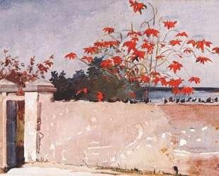 A wall, Nassau — Уинслоу Хомер