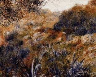 Algerian Landscape (The Ravine of the Wild Women) — Пьер Огюст Ренуар