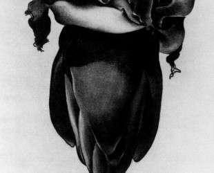 Banana Flower — Джорджия О'Киф