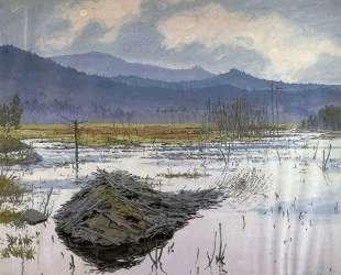 Beaver Pond — Нил Уэлливер