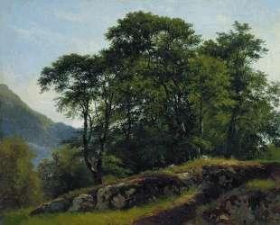 Буковый лес в Швейцарии — Иван Шишкин