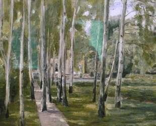 Birch grow — Макс Либерман