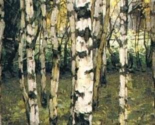 Birches. Petrovskoye — Константин Юон
