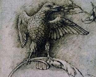 Bird on a branch — Андреа Мантенья