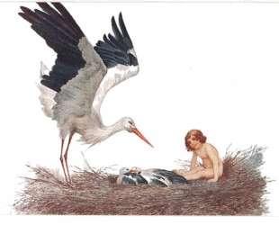 Да будет благословен дом где аист свил себе гнездо — Сергей Соломко
