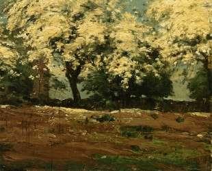 Blossoms — Чайльд Гассам