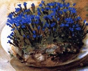 Blue Gentians — Джон Сингер Сарджент
