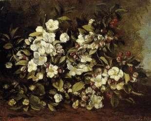 Ветка цветущей яблони — Гюстав Курбе