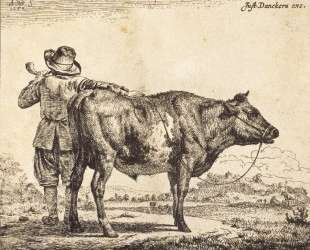 Bull — Адриан ван де Вельде
