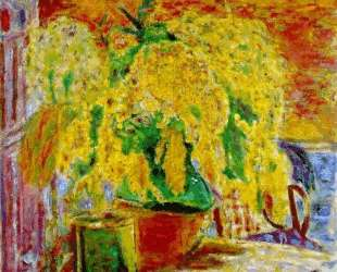 Bunch of Mimosa — Пьер Боннар