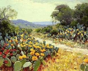 Cactus in Bloom — Роберт Джулиан Ондердонк