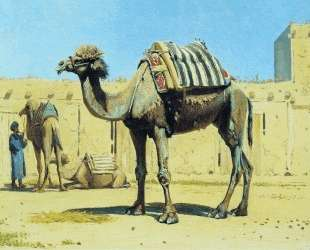 Camel in the courtyard of caravanserai — Василий Верещагин