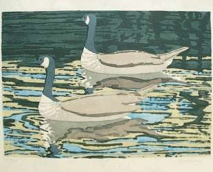 Canadian Geese — Нил Уэлливер