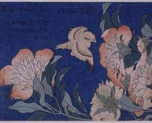 Canary and Peony — Кацусика Хокусай