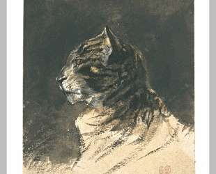 Голова кошки — Эжен Делакруа