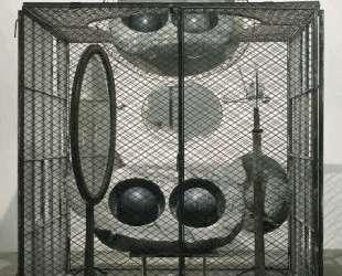 Клетка (Глаза и зеркала) — Луиза Буржуа