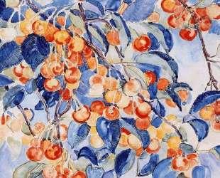 Cherries — Тео ван Рейссельберге