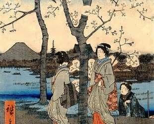 Cherry Tree — Хиросиге
