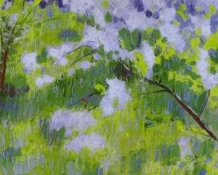 Вишни в цвету — Виктор Борисов-Мусатов