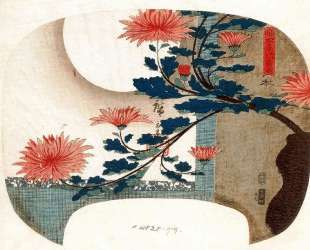 Chrysanthemums — Хиросиге