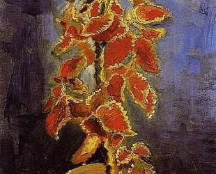 Coleus Plant in a Flowerpot — Винсент Ван Гог
