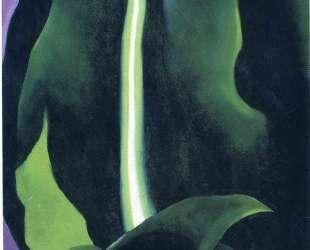 Corn, Dark I — Джорджия О'Киф