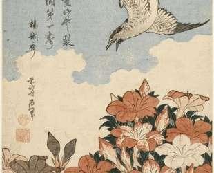 Cuckoo and Azaleas — Кацусика Хокусай