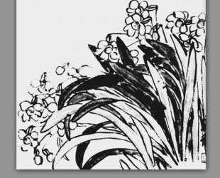 Daffodils — Ци Байши