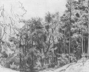 Лиственный лес — Иван Шишкин