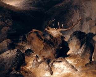 Deer and Deer Hounds in a Mountain Torrent — Эдвин Генри Ландсир