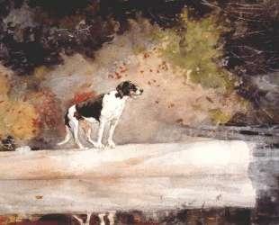 Dog on a log — Уинслоу Хомер