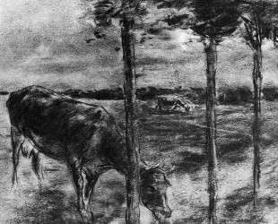 Drinking cow — Макс Либерман