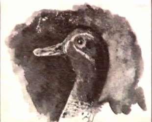 Duck's head — Николай Рерих
