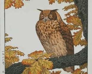 Eagle Owl — Тоси Ёсида