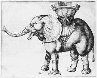 Elefant — Мартин Шонгауэр