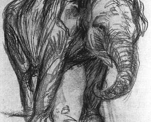 Elephant — Франц Марк