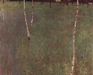 Farmhouses with Birch Trees — Густав Климт