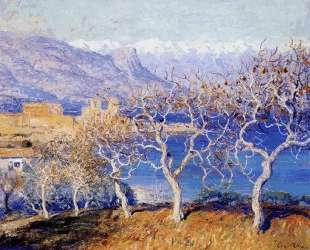 Fig Trees, Antibes — Ги Роуз