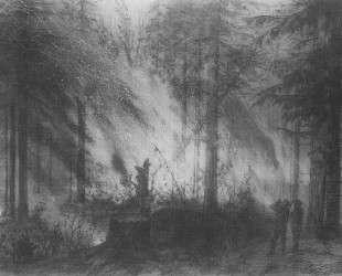 Пожар в сухой кобре — Василий Поленов