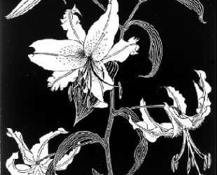 Flowers — Мауриц Корнелис Эшер