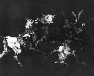 Foolishness of the Fools — Франсиско де Гойя